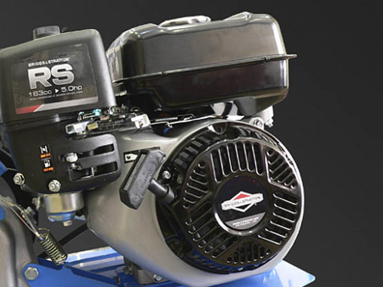 Двигатель Briggs&Stratton RS750