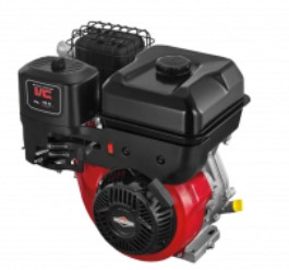 Briggs&Stratton IC 10.0.jpg